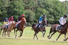 Stages et Courses Poneys au Galop